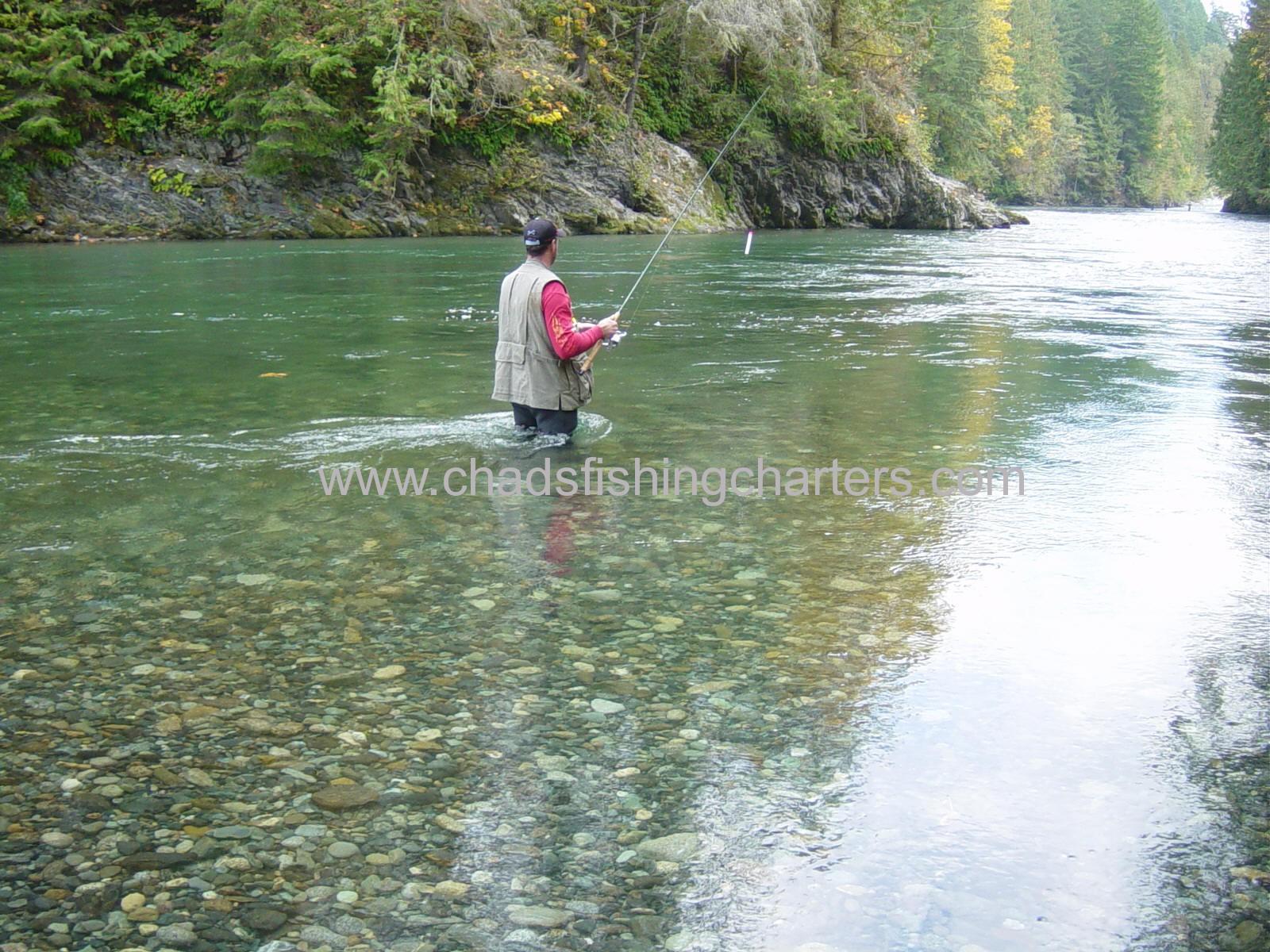 Fraser river fishing guides chilliwack river charters for Fraser river fishing